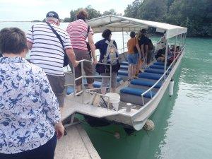 Boat Cruise around Willie Creek