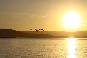Sunset at Lake Argyle