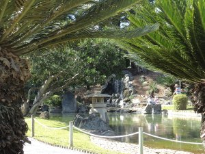 Tranquil Japanese Garden at Botanic Gardens