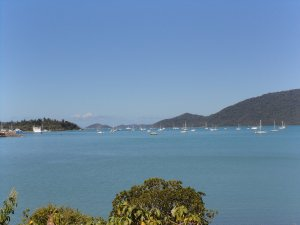 View at Shute Harbour