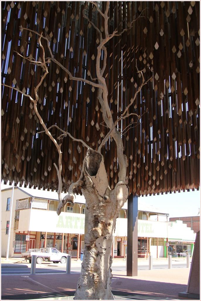 Tree of Knowledge at Barcaldine