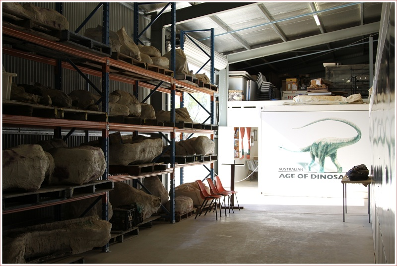 Bones Waiting to be Recovered at the Dinosaur Centre near Winton