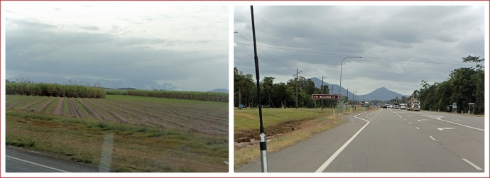 Scenery has changed to mainly sugarcane fields