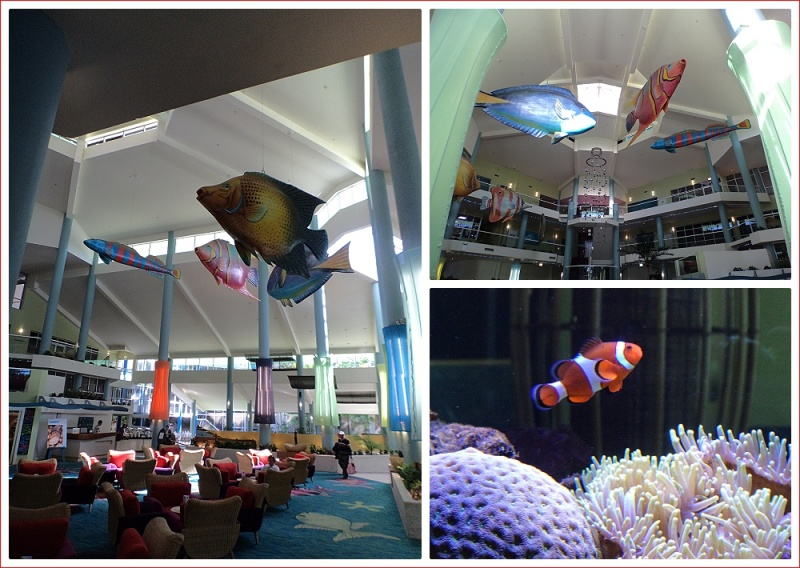 Fishy theme at Daydream