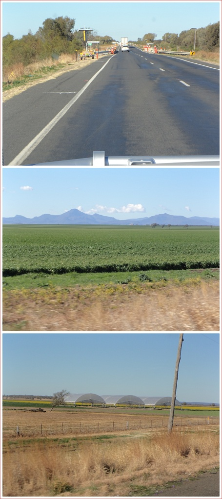 Scenes along the Newell Highway