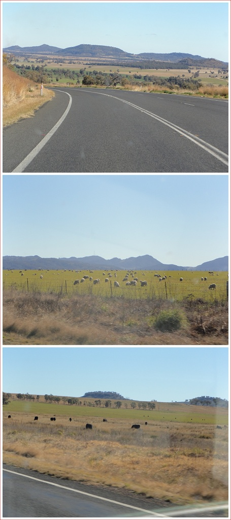 Different scenery along the Newell Highway