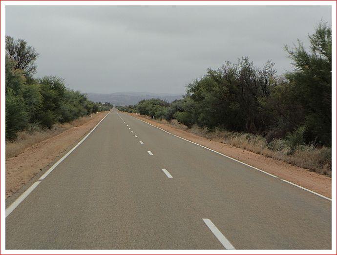Scenery along Horrocks Highway.