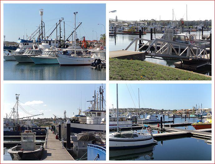 Views of the Marina.