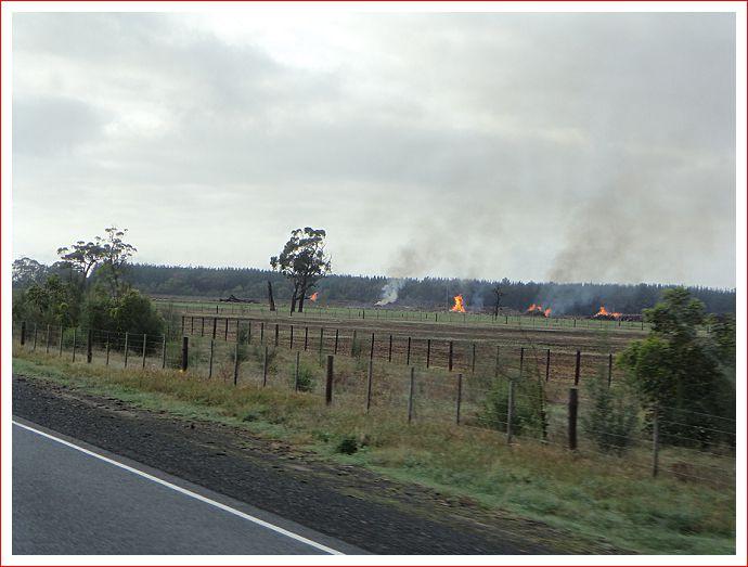 Fields on Fire !