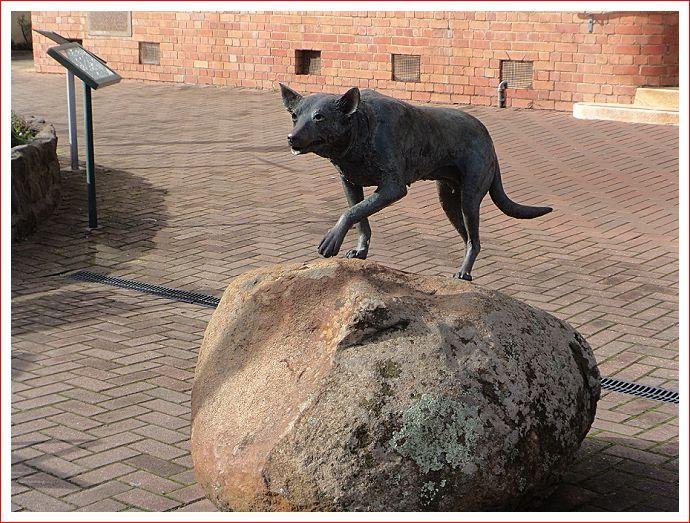 Kelpie statue in Casterton.