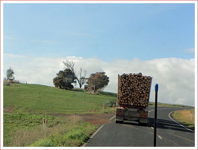 Logging truck - they were everywhere.