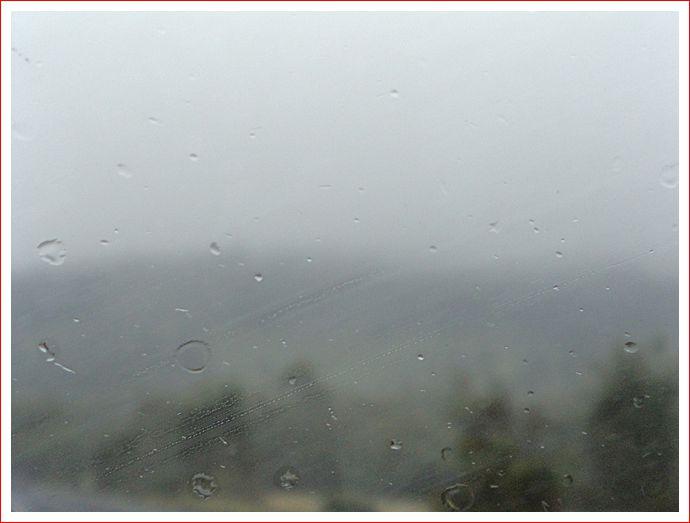Foggy and wet at Wallan.