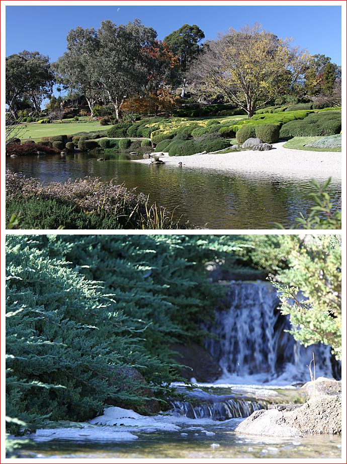 Water is a feature at Cowra Japanese Gardens