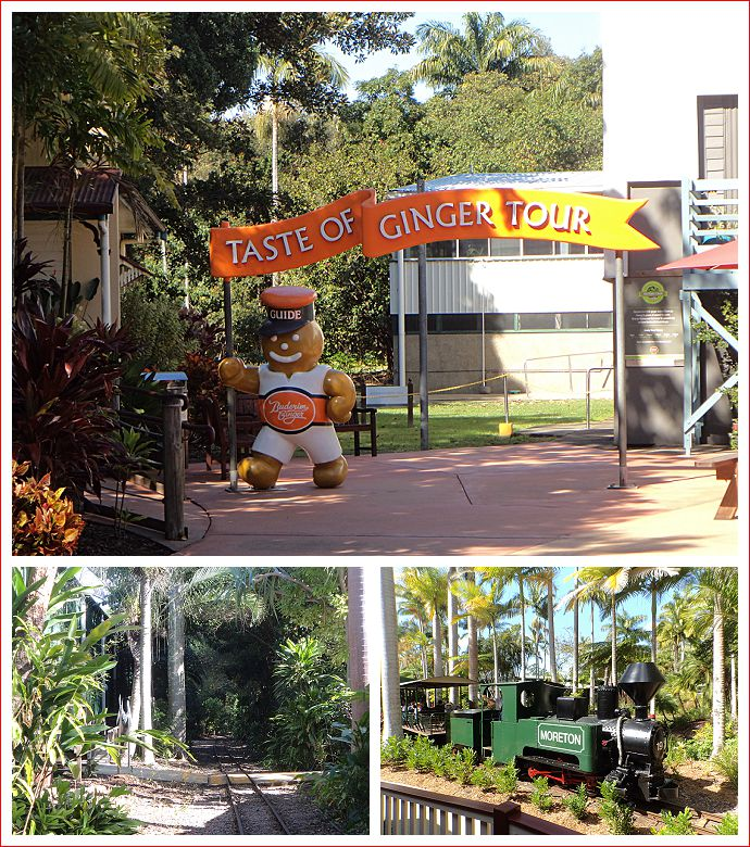 Views around the Ginger Factory at Yandina