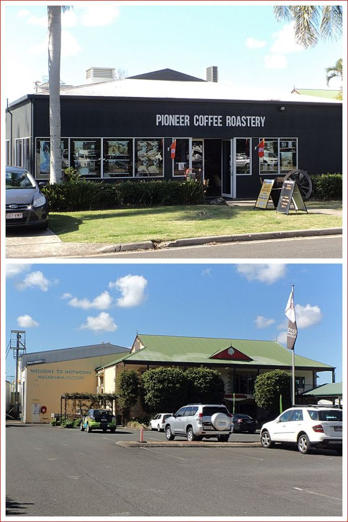 Pioneer Coffee and the Nutworks Macadamia Nut Factory at Yandina