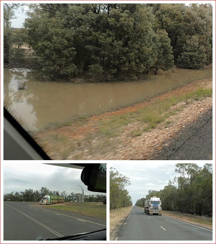 Views along Moonie Highway