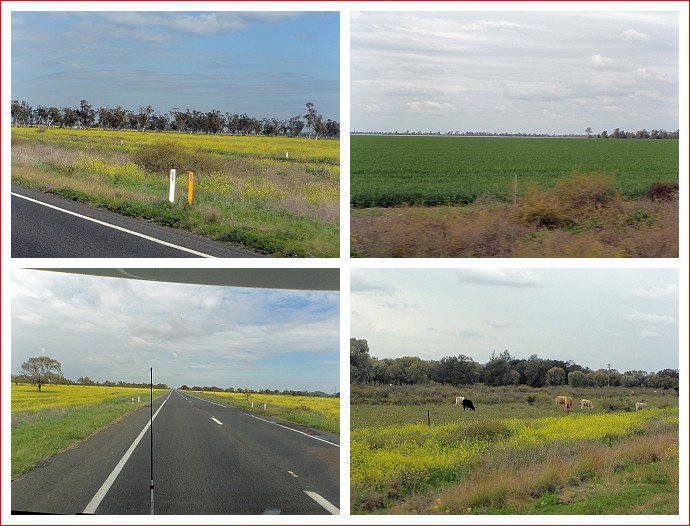 Views along the Newell Highway
