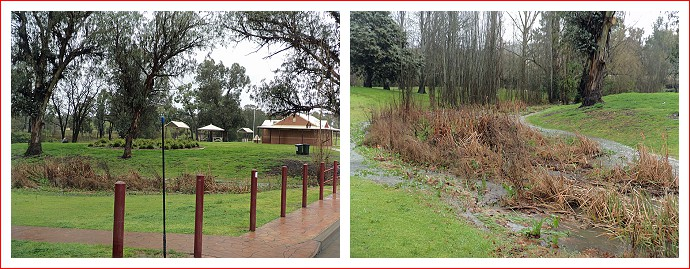 Neilson Park at Coonabarabran waterlogged