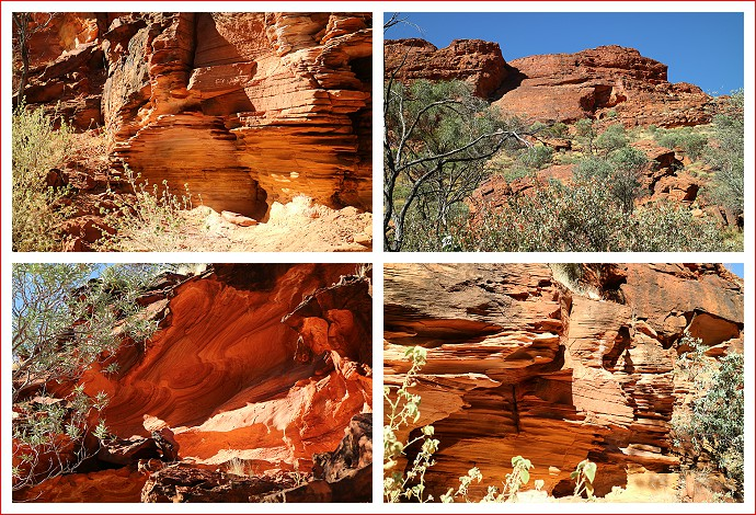 Scenes from the Kings Canyon Creek Walk